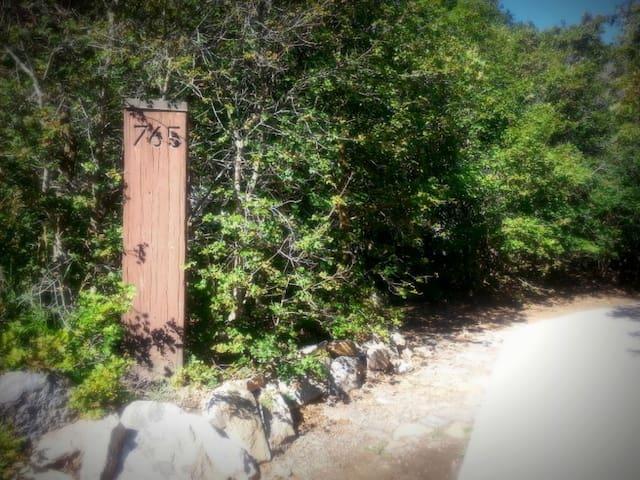 Woodland escape in the hills - Woodland Hills - Departamento