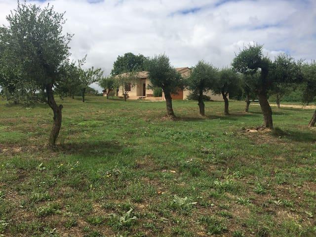 Maison en campagne tout confort avec grand jardin - Loubers - Ev
