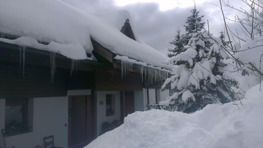 Tolle, sonnige Lage - Sankt Blasien - Haus