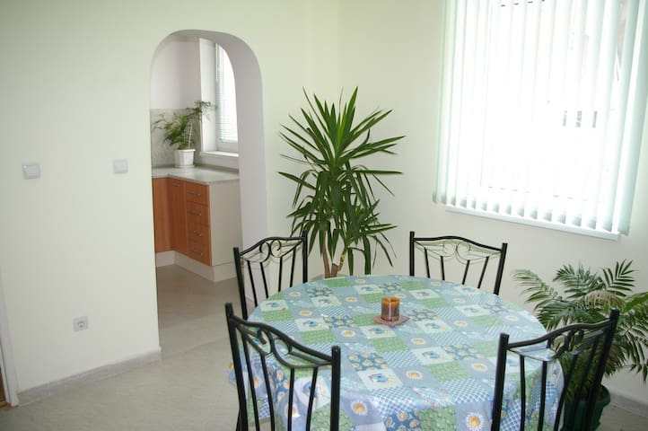 Apartment with beautiful garden - Sofia - Stadswoning