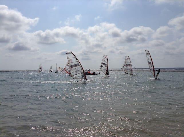 DREAM  FOR  HOLIDAYS AT SEA - Caesarea - Talo