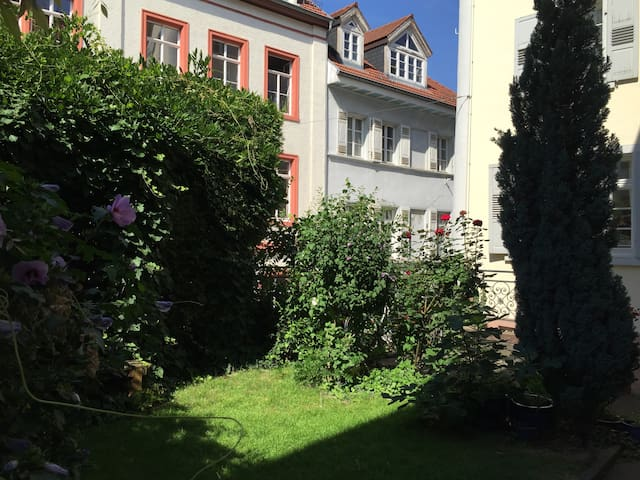 Luxury apartment in historic center - Heidelberg - Leilighet