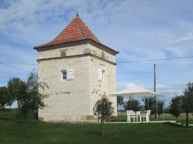 Pigeonnier - Monestiés - Casa