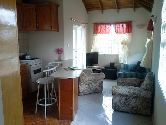 Private room for rent - Bridgetown - Lakás