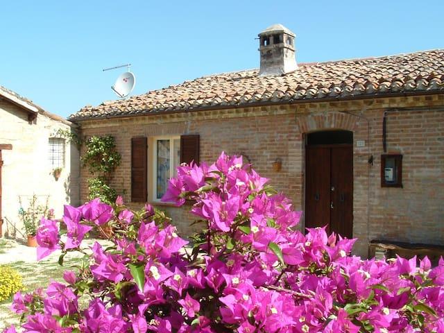 Country House La Casa dei Fiori - Matelica - 別荘