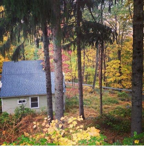Cold Spring Cottage - Cold Spring - Bed & Breakfast