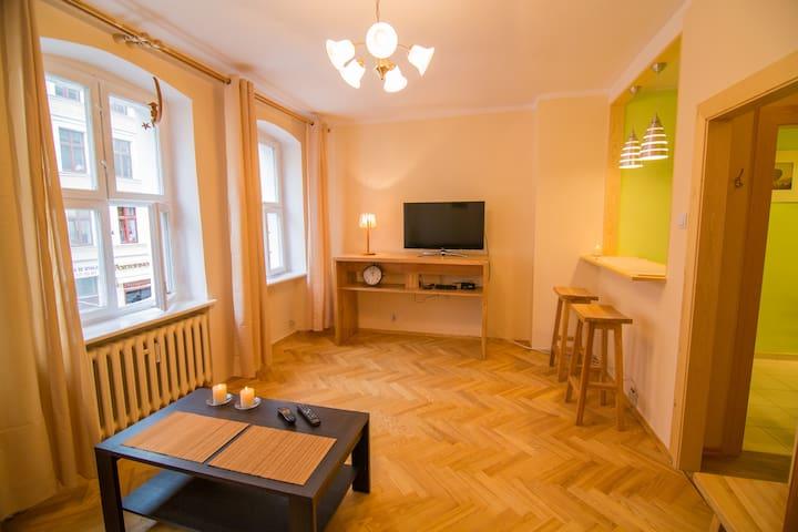Apartament księżycowy - toruński - Lägenhet