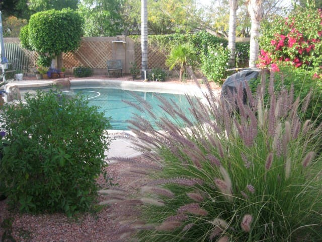 Charming House 1 in secluded street - Chandler - Haus