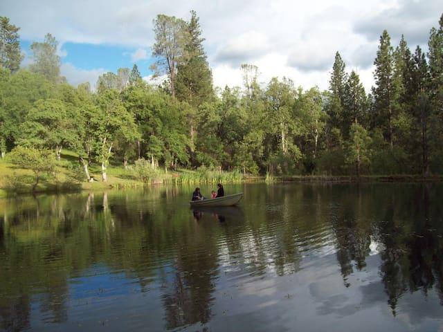 Three Ponds - Grass Valley