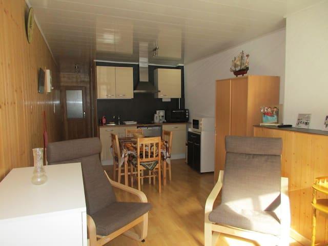 Au P'tit Grillon - Salins-les-Bains - Appartement