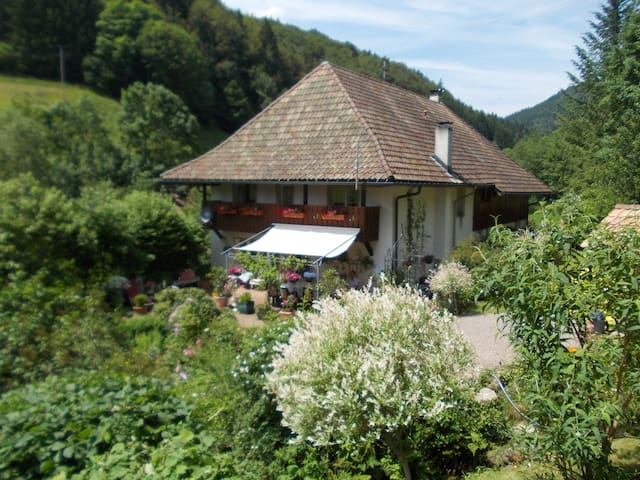 Black Forest Holiday Cottage. - Bürchau Kleines Wisental (Black Forest) - Квартира
