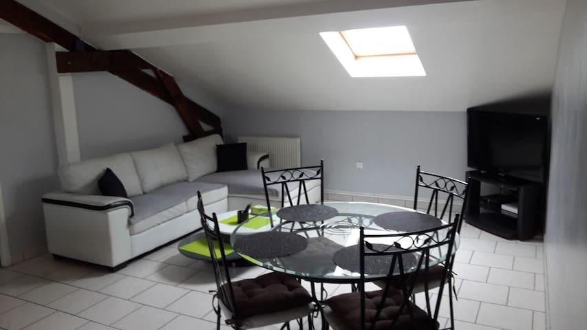 Bel Appartement T2 à 15mn de Nancy - Pont-Saint-Vincent - Leilighet