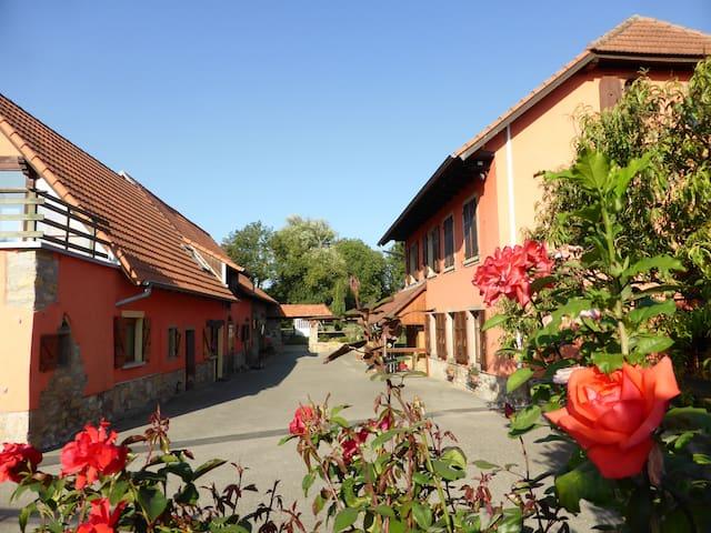 Gite du moulin de la Souffel - Kuttolsheim - Huis