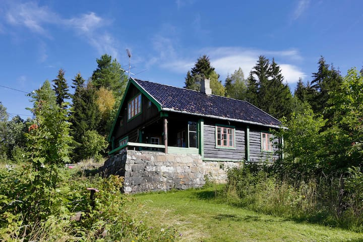 Peaceful cottage only 1 h from Oslo - Lunner - Ξυλόσπιτο