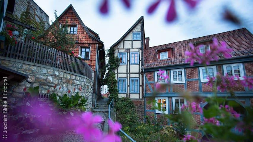 """Halbes Haus"" (Half House) - Quedlinburg - Hus"