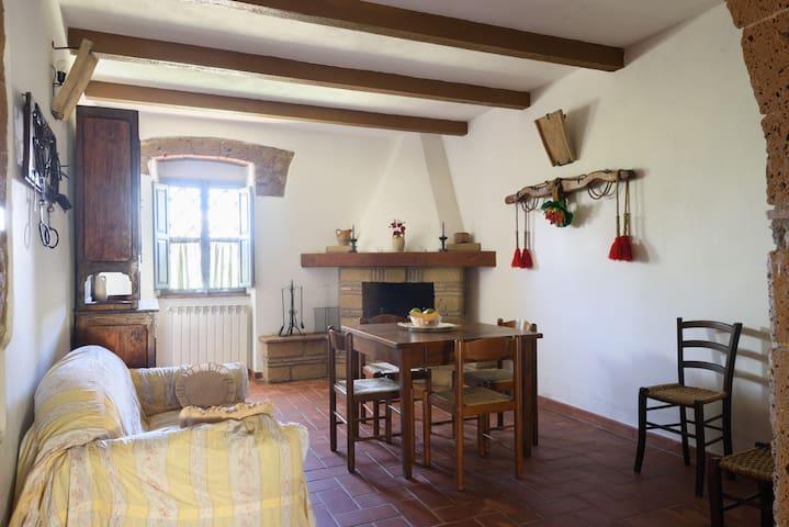 Agriturismo Carbonaio: La caciaia - Sorano - Apartment