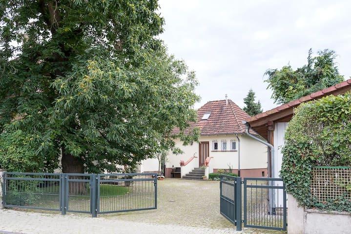 Ferienhaus Marone - Fritzlar - Hus