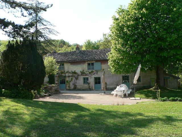Maison Vigneronne 18 pers., 3 hect. - Tournus - Hus
