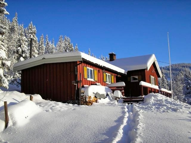 Winter sports and recreation - Nord-Aurdal - Cabaña