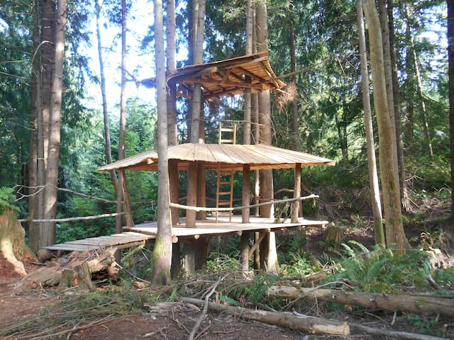 The Stump House: SunRay Kelley - Sedro-Woolley