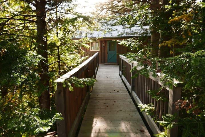 Superbe havre de paix dans la forêt - Val-David - Hus