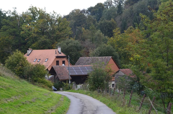 Moulin Pacot - Pailly - Departamento