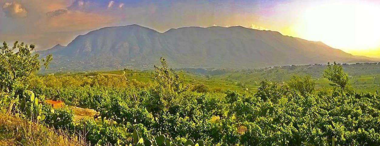 Villa Country Hill Chic - San Lorenzo Maggiore - 別荘
