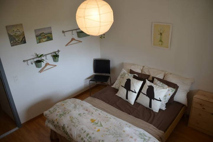 Cozy room in spacious apartment. - Brugg - Appartement