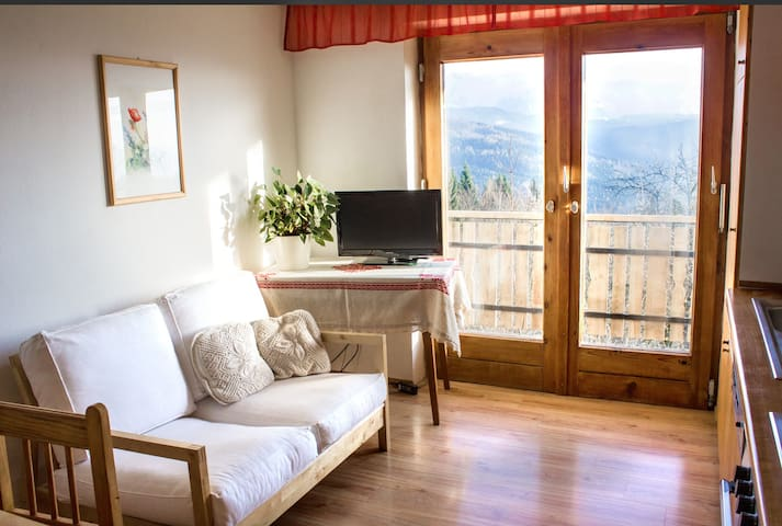 Apartment with a nice view Salzkammergut - Weyregg an Attersee - Daire