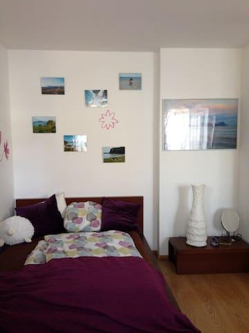 Cozy flat for 1- 2 people in Krems - Krems an der Donau - Appartement