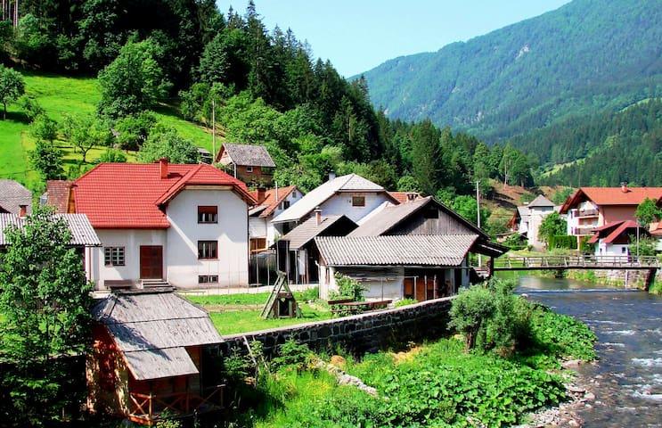 Large, cosy, rustic farmhouse - Krnica, Luče - Haus