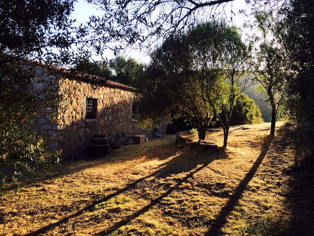 Relaxing Lakeside Country Farmhouse - Sant'Antonio di Gallura - Haus