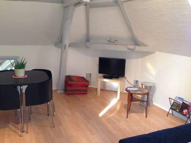 Charming 2 rooms ** Ay Champagne - Ay - Leilighet