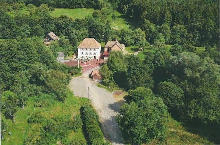 Between the Vosges and Vineyards - Lautenbach - Departamento