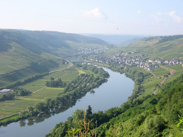 Staying at a winery on the Mosel - Reil - Aamiaismajoitus