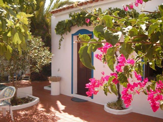 house in old winemaking village - Vila de Frades - Huis