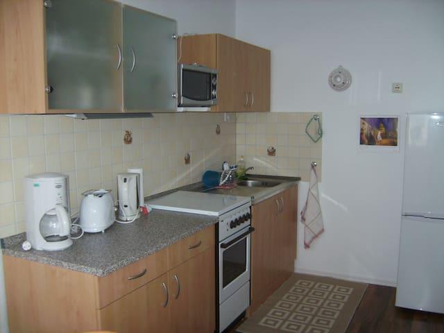 Wohnung 48qm,komplett eingerichtet - Zeulenroda-Triebes - Apartamento