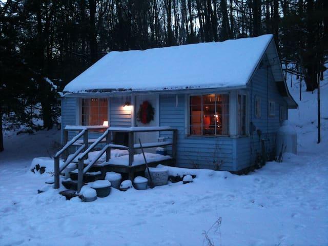 Cozy cabin in the Catskills - Olivebridge - Mökki