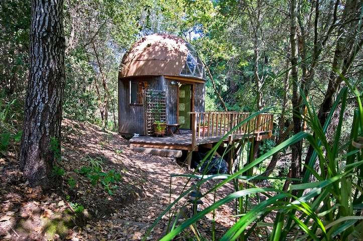 Mushroom Dome Cabin: #1  on airbnb in the world - Aptos - Cabaña