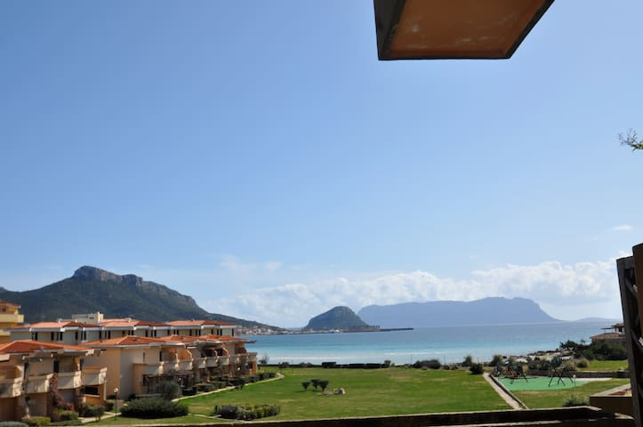 SAME SAME but DIFFERENT SEA VIEW - Golfo Aranci - Appartement