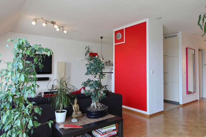 Room to let in Morges town centre - Morges - Apartemen