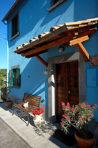 BLUE HOUSE - CASA BLU / BAGNOREGIO - Castel Cellesi - Hus