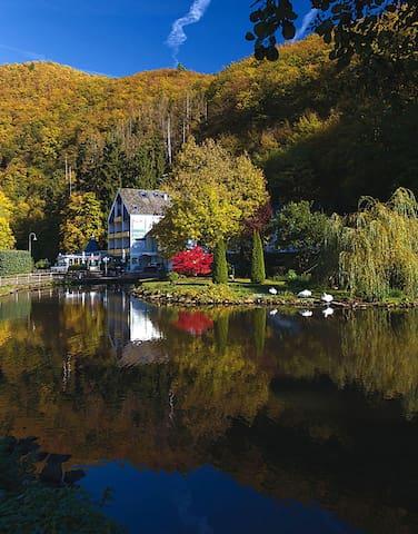 Traum - Ferienhaus am Schwanenteich - Bad Bertrich - Villa