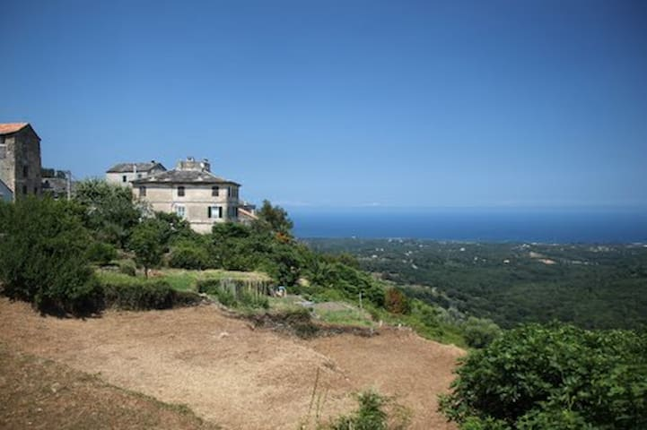 Rent charming studio in Corsica - Sant'Andréa-di-Cotone - Wohnung