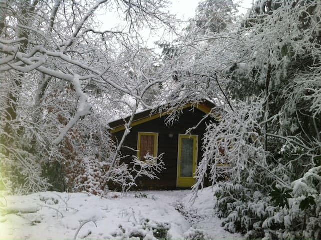 Central and Cosy Cabin in the Woods - Hollandsche Rading - Cabane