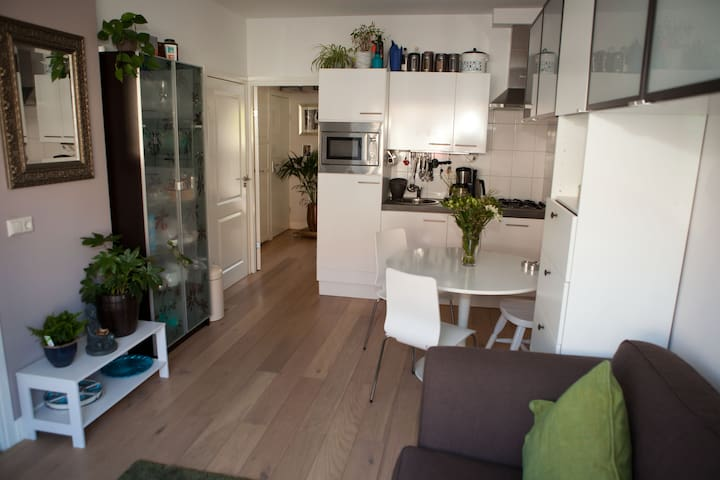 Nice and cosy apartment with garden - 烏特勒支 - 公寓