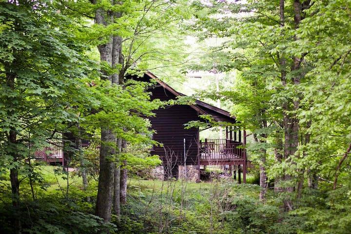 Beautiful cabin on Sugar Mountain - Newland