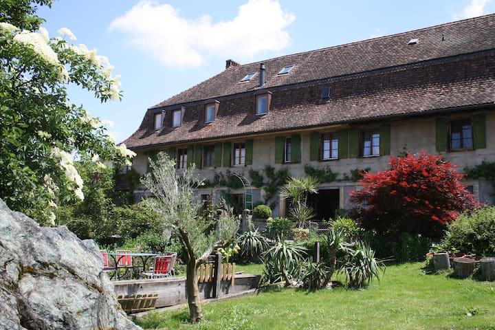 The nice, little Ofenhaus 1750 - Murten - Hus