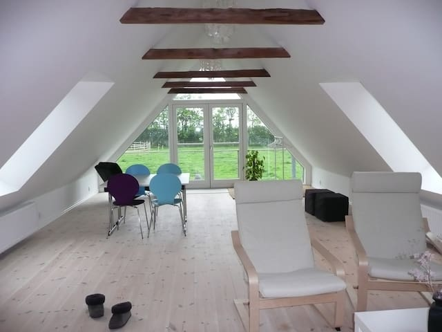 Peaceful country flat with view - Brenderup - Bed & Breakfast
