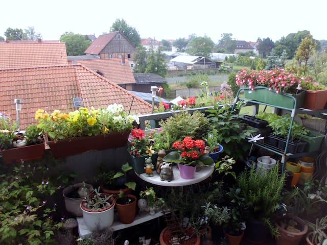 zu besuch bei lessing&jägermeister - Wolfenbüttel - Lägenhet